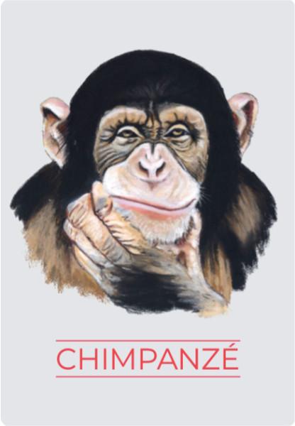 Animaux Totem - Chimpanzé