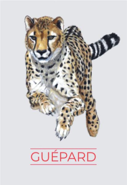Animaux Totem - Guépard